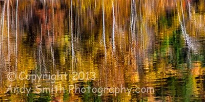 Fall Reflection on the Lackawaxen